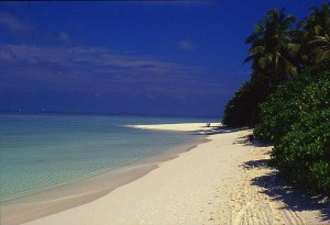 Maldív-szigetek varázsa